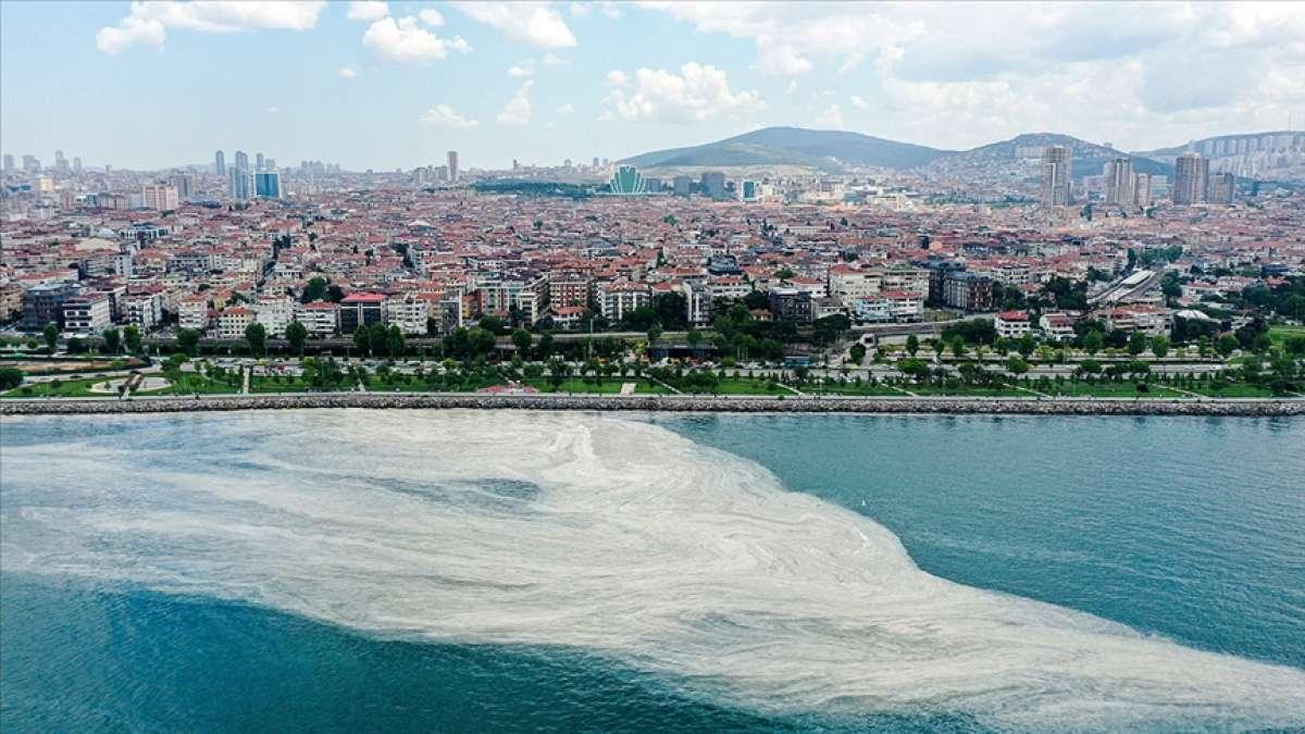 Marmara Denizi'ndeki müsilaj sorununa acil çözüm için bilim insanları YÖK'te toplanacak